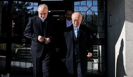 IAEA's Amano in Tehran for Talks on JCPOA Implementation
