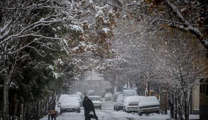 Southern Iran experiences snow after decades