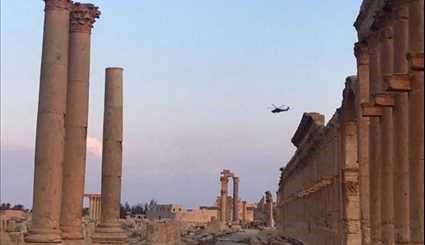 Syria Army Soldiers Guarding Ancient City of Palmyra