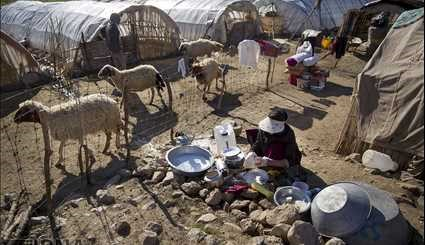 Nomads in western Iran