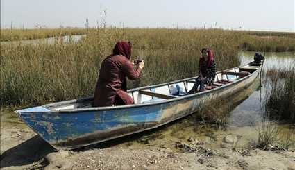 Shadegan Wetland