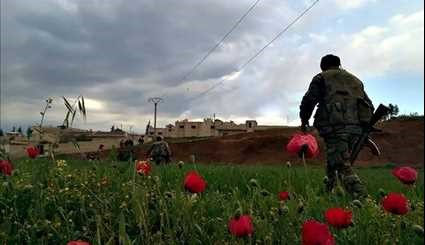 Syrian Army Continues to March on Terrorists' Positions in Hama