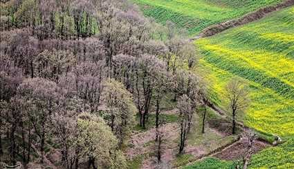 Iran's Beauties in Photos: Spring in Gorgan
