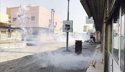 Bahrainis Stage Demonstrations against Formula 1 Grand Prix