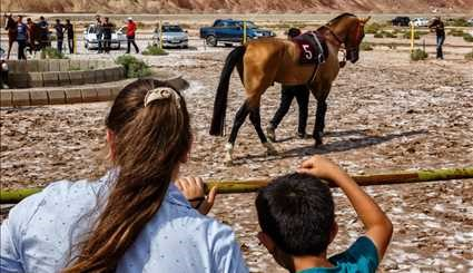 Horse racing in East Azerbaijan