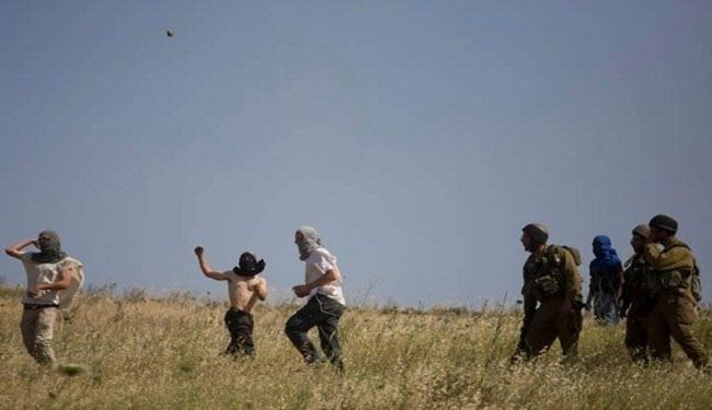 Israeli settlers set fire to Palestinian fields in WB