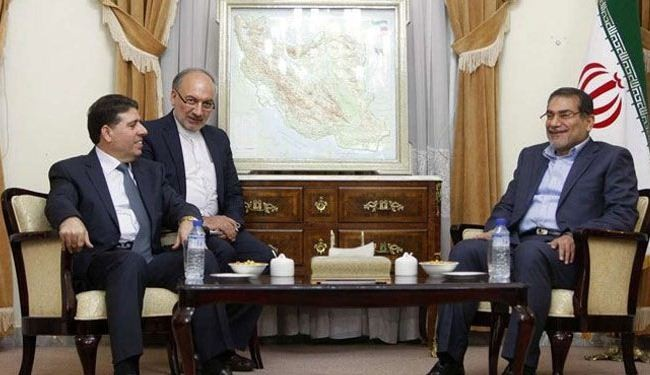 Iran supports any int'l effort to end Syria bloodshed: Shamkhani