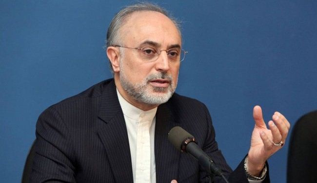 Salehi: Inspecting military sites not within IAEA authorities