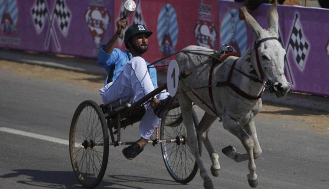 In Picture: Donkey derby in Pakistan