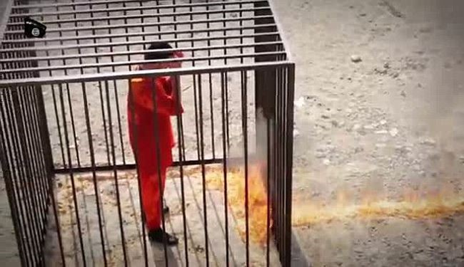 ISIS Militants Admitted Drugging Jordanian Pilot : Media