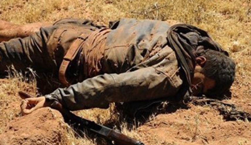 Senior Commander of Ahrar Al-Sham Terrorist Group Killed in Quneitra Province