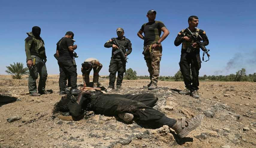 Iraqi Forces Kill 14 ISIS Terrorists East of Mosul