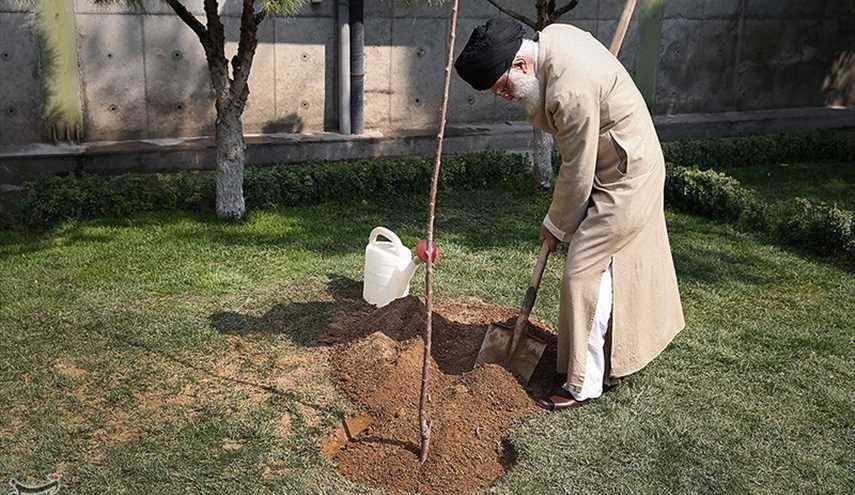 Leader Plants Saplings in National Resources Week