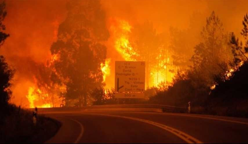 Portugal forest fires kill 57 near Coimbra
