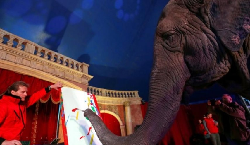 Paintings by Indian elephant auctioned off in Hungary
