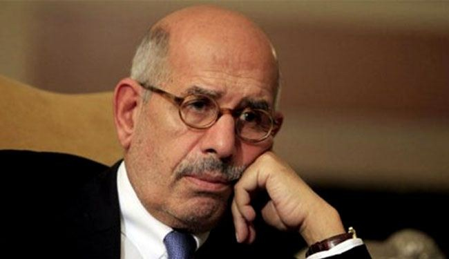 Egypt opposition picks ElBaradei as representative