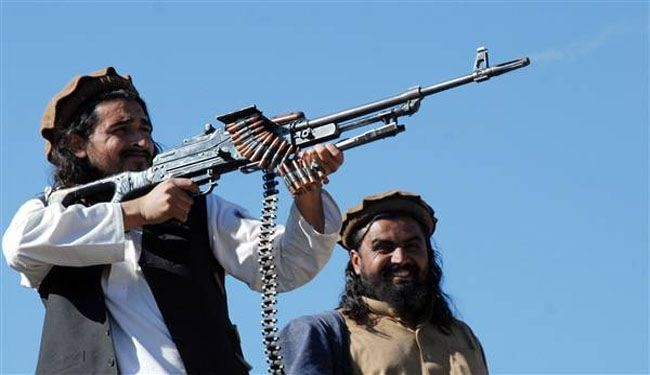 Pakistani Taliban picks new leader