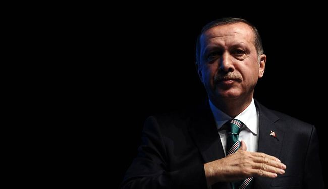 Erdogan to foreign envoys: Mind your own businesses