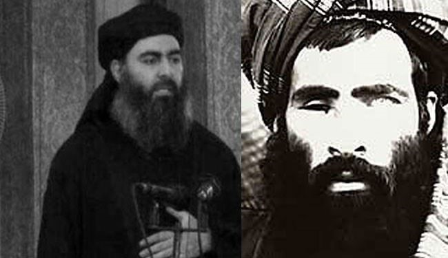 Reconciliation of ISIS's Baghdadi and Mullah Omar by Pakistani Taliban