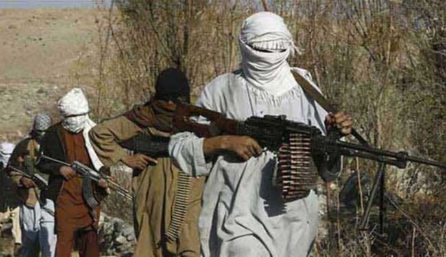 Pakistan: Al-Qaeda Commander Killed, His Wife Detained
