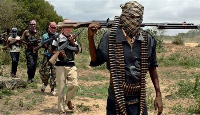 At Least 12 Boko Haram Militants Killed in Niger: Military Source