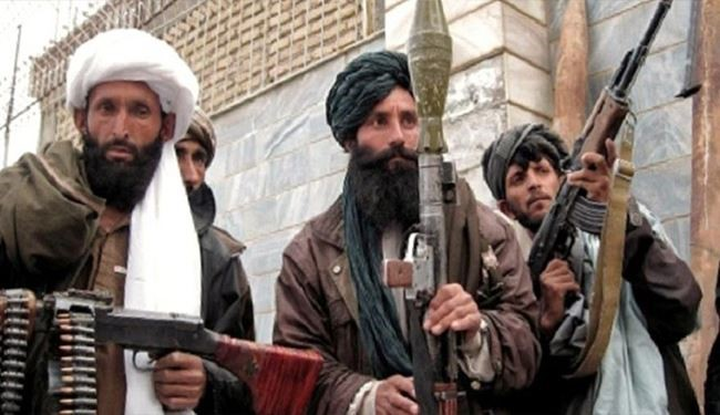 Taliban Supports Afghanistan in Fight against Islamic State