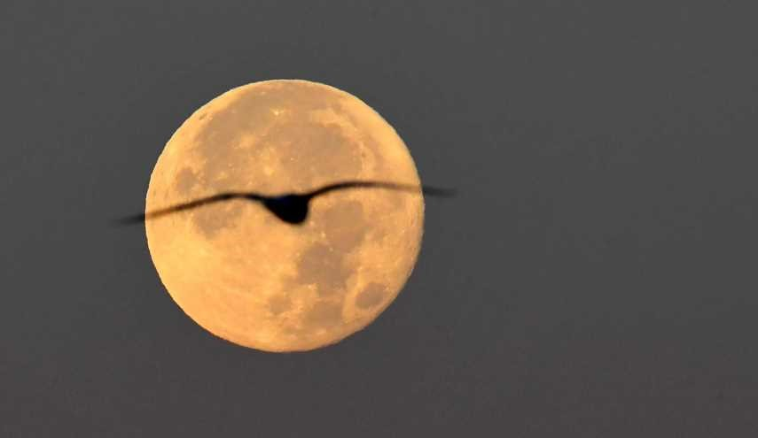 AMAZING PHOTOS: Stunning Supermoon Decorates Skies around World