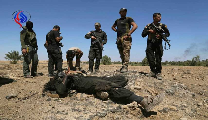 68 ISIS Terrorists Killed in Iraqi Army's Military Operations in Nineveh Province
