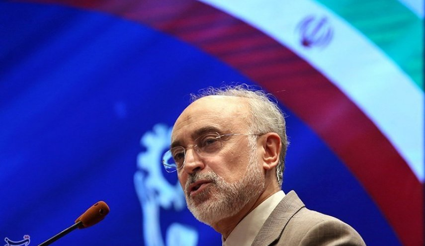 Iran in talks with Euratom on cooperation in Quantum Technology: Nuclear Chief